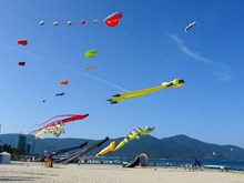 Colourful kite festival held in Da Nang
