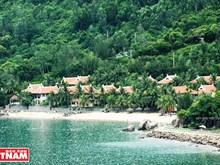Bai Rang beach in Da Nang -  the harmony of forest and sea