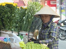 A glimpse at female street vendors in Hanoi