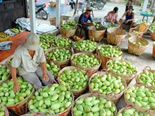 Fruit, veggie exports likely to earn Vietnam 4.7 billion USD in 2018