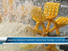 Aquatic product export expected to rise 13 pct in Q3