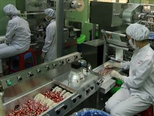 Standardize GMP in manufacturing dietary supplements
