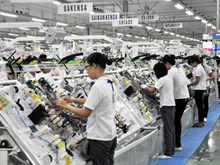 Developing product chains to boost export growth