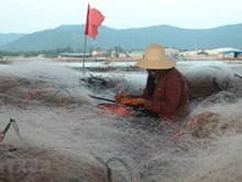 Fishing net weaving villages busy all year round