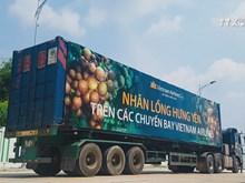 Vietnam Airlines to serve passengers Hung Yen longans