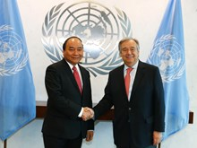Vietnam active in United Nations  ​