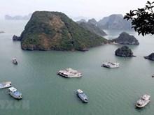Binh Thuan moves to optimize sea tourism advantages