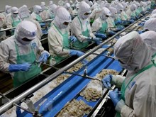 Nine-month seafood exports estimated at 6.4 billion USD