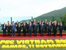 Vietnam marks 20 years of APEC membership
