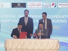 Vietnam boosts investment cooperation with Dubai