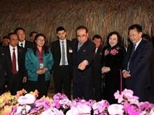 DPRK delegation visits Dan Hoai Co-operative