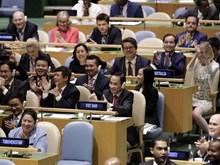 Vietnam wins seat on UNSC