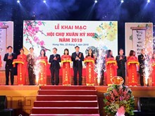 Spring festival 2019 opens in Hung Yen