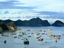 Cat Ba island - A pearl of northern Vietnam