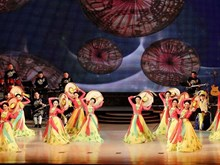 Vietnamese art performance wows DPRK audience