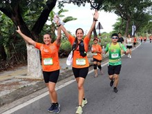 Manulife Da Nang International Marathon 2019