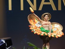 Vietnam national costume among top outfits at Miss Universe