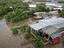 Ca Mau province tackles climate change