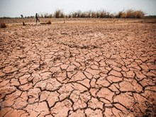 Central Highlands locality struggles with drought