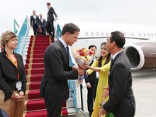 PM of Netherlands begins official visit to Vietnam
