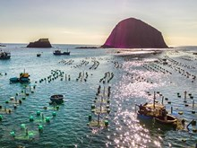 Phu Yen lobster farming
