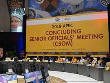 Vietnam takes part in 2018 APEC CSOM in Papua New Guinea