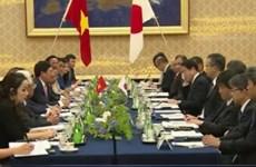 Vietnam, Japan foster bilateral ties in numerous aspects