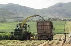 Phu Yen targets modern rural area building