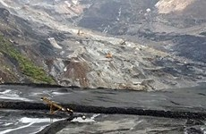 Thermal power plants may face coal shortage