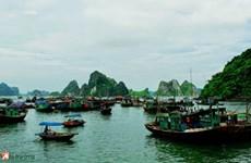 Soc Trang turns sea-borne economy into major pillar