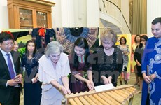 Vietnamese culture shines in US