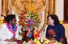 Hanoi, Johannesburg to bolster all-around links