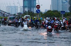 HCM City urged to tackle flooding