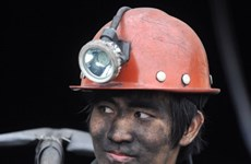 A day at the mine launched in Quang Ninh