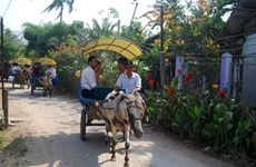 Tourism focuses on southeast region