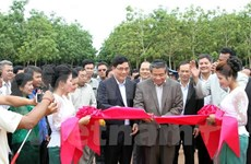 Vietnam rubber latex processing plant built in Cambodia