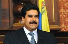 Vietnam, Venezuela enhance cooperation