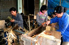 "International agencies help Thanh Hoa develop ""luong"" bamboo"