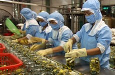 Vietnam's GDP likely to gain most from TPP, AEC