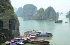 Quang Ninh's tourism surges in first seven months of 2015