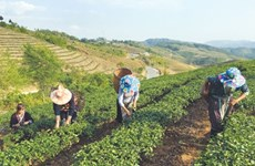 NA calls for better land management