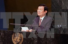 President: Vietnam commits to successfully implementing SDGs