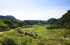 Cao Son's striking terrain steals travellers' hearts