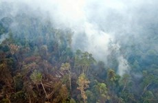 Japan helps Indonesia tackle fires