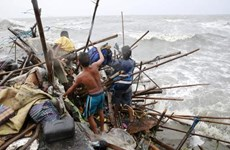Typhoon Koppu causes heavy loss in Philippines