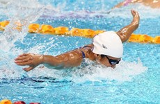 Vien stars in the pool with 16 golds