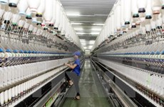 German press spotlights Vietnam economic liberalisation efforts