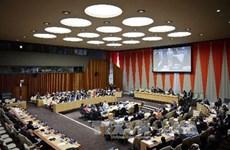 Vietnam elected to UN Economic and Social Council