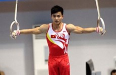 Vietnamese gymnasts to compete for ticket to Rio
