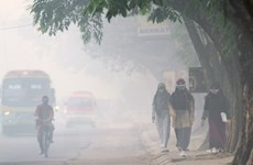 Indonesia haze pollution spreads to southern Philippines